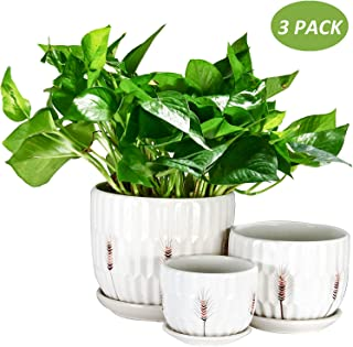 Plant Pots, OAMCEG Round Modern Flower Pot Small to Medium Sized(4.1in/5.5in/6.7in), Ceramic Garden Plants Containers/Succ...