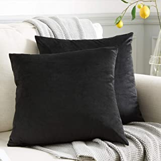 WAYIMPRESS Soft Velvet Throw Pillow Covers 16x16,Pack of 2 Decorative Solid Square Cushion Case for Sofa Couch Chair Car (...