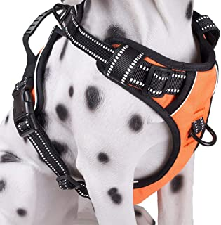 Dog Harness No Pull, Adjustable Vest Harness with Handle & 2 Leash Attachments, Reflective Harness for Dogs Walking & Trai...