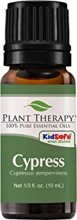 Plant Therapy Cypress Essential Oil 100% Pure, Undiluted, Natural Aromatherapy, Therapeutic Grade 10 mL (1/3 oz)