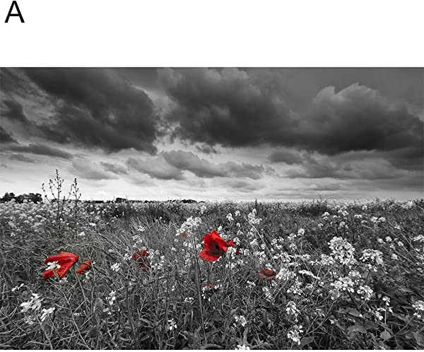 Memorytime Flower Tree Black Clouds Canvas Painting Wall Picture Art Poster For Living Home Decor A 40cm X 50cm