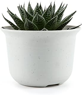 JynXos 3.5 Inch Plastic Round succulent Plant Pot/Cactus Plant Pot Flower Pot/Container/Planter White Package 1 Pack of 10
