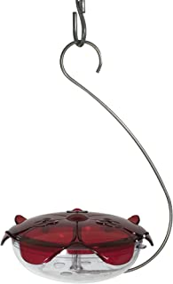 Droll Yankees Hummingbird Feeder with Hanger, Ruby Slipper Red Feeder, 5 Ounce Nectar Capacity