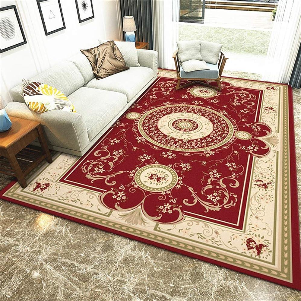 熟すテレビ局茎輸入ラグ ペルシャ 柄 ラグラグ インド綿 120x160cm 新しいヨーロッパスタイルのモダンなミニマリストのリビングルームのカーペットの家の印刷の正方形の床のマットの処理ポリエステル家庭用002