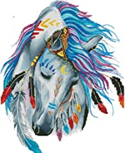 Moohue Needlework 14CT Counted Cross Stitch Kits Indian Horse Hand Embroidery Pattern DMC Thread Cross Stitch Fabric Needles Wall Room Decor Crafts Kits (Indian Horse)