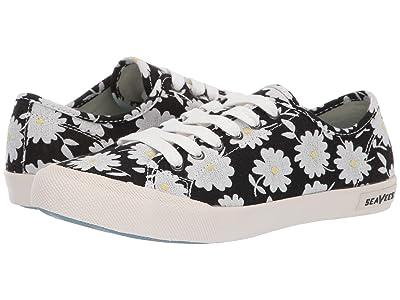 SeaVees Monterey Sneaker Embroidery (Black Daisy) Women