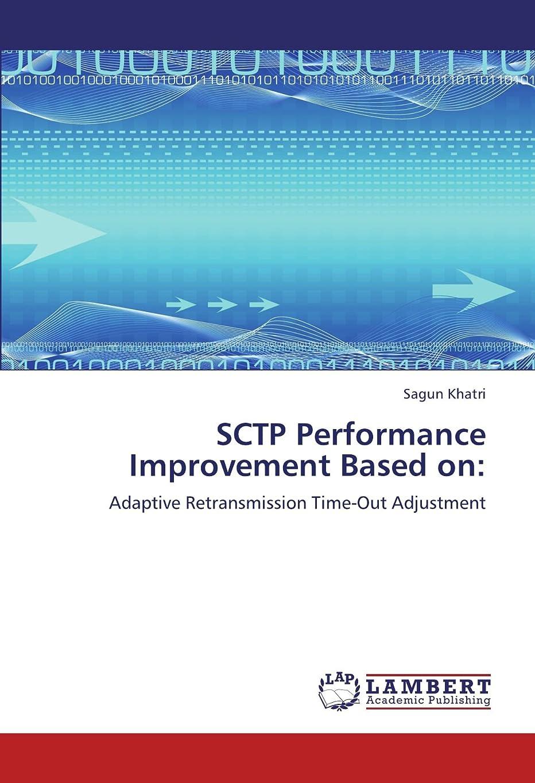 いっぱい銛ギターSctp Performance Improvement Based on