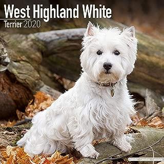 West Highland Terrier Calendar 2020 - Dog Breed Calendar - Wall Calendar 2019-2020