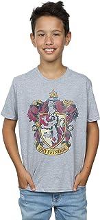 HARRY POTTER niños Gryffindor Distressed Crest Camiseta 12-13 Years Gris Sport