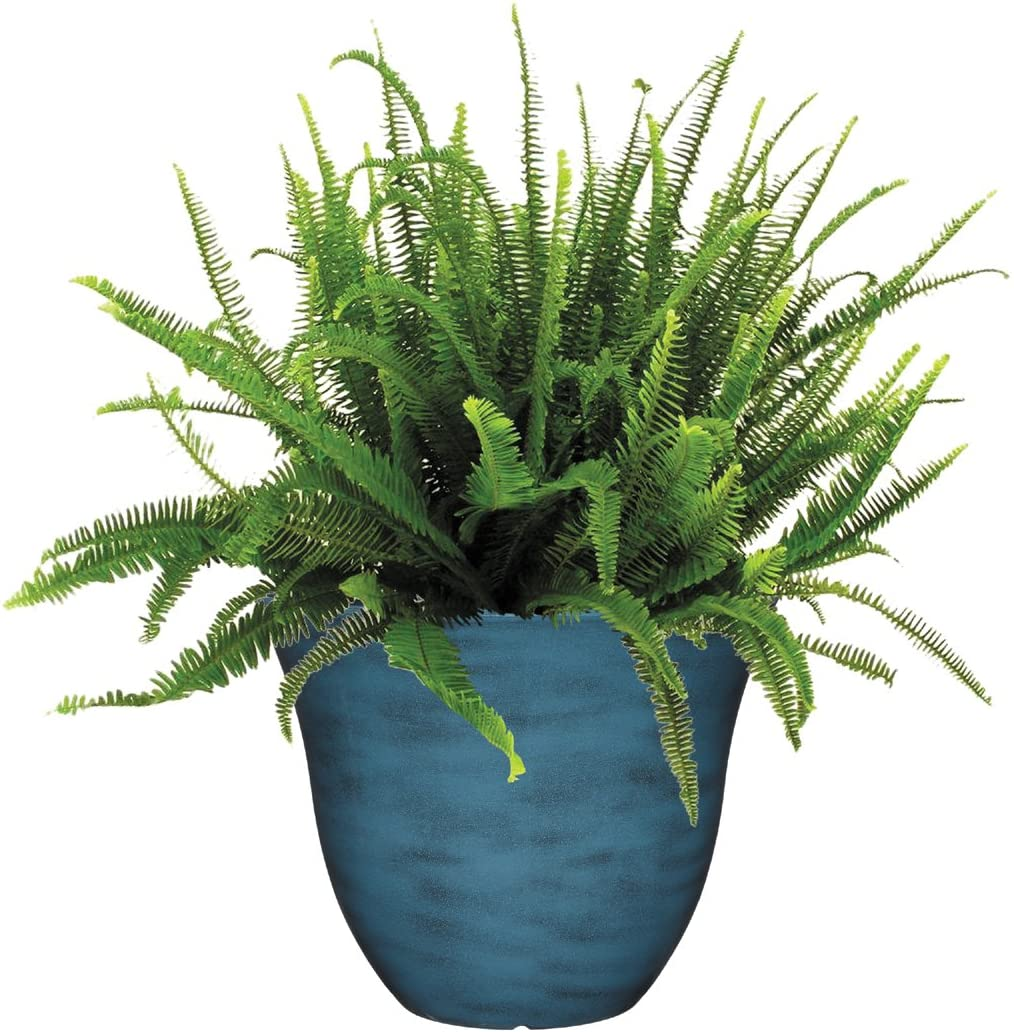 1-Pack 13 Blue Jean Blue Jean Classic Home and Garden Honeysuckle Planter , 13 Inch Patio Pot