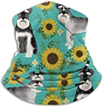 Schnauzer Dog And Sunflower Summer Turquoise Unisex Winter Fleece Neck Warmer Gaiters Hairband Cold Weather Tube Face Mask Thermal Neck Scarf Outdoor UV Protection Party Cover