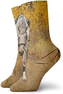 Cute Bi, Calcetines de compresión antideslizantes para perros y caballos Calcetines deportivos acogedores de 11.8 pulgadas para hombres, mujeres y niños