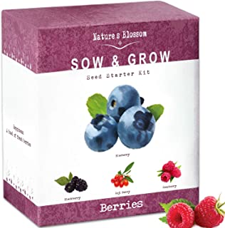 Nature's Blossom Exotic Berries Seed Starter Kits - A Complete Beginners Garden Grow Kit for Growing 4 Types of Berry Fruits from Organic Seeds. Unique Idea.