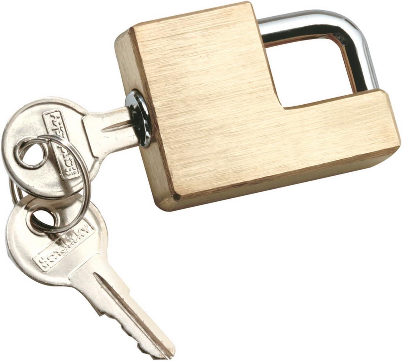 2021 Philadelphia Mall new Reese Towpower 7005300 Brass Lock Coupler