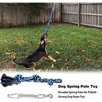 Dog Leashes-Pet Durable Stainless Steel Spring Pole Dog Rope Toys Hanging Exercise Rope Pull with 5M Black Ropes