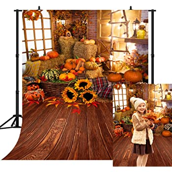 10x8ft Vinyl Autumn Deciduous Pumpkin Decoration Pattern Photography Backdrop Vinyl Theme Party Banner Photo Shooting Props Background LYLS1114 for Party Decoration Birthday YouTube Videos School Phot