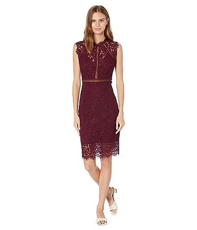Bardot Lace Panel Dress
