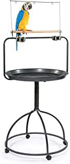 Prevue Hendryx 3183 Parrot Playstand, Round