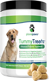 Best are probiotics safe for dogs Reviews