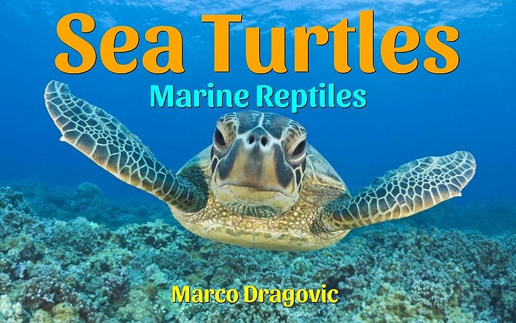 ヒューム故障中とげSea Turtles: Marine Reptiles - Fun Facts For Kids, Picture Books For Kids (English Edition)