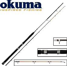 Trollingrute Downrigger Rute,180cm FLADEN XTRA FLEXX Downrigger 6-8ft 240cm
