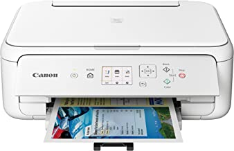 Canon TS5120 Wireless All-In-One Printer with Scanner and Copier: Mobile and Tablet Printing, with Airprint(TM) and Google Cloud Print compatible, White