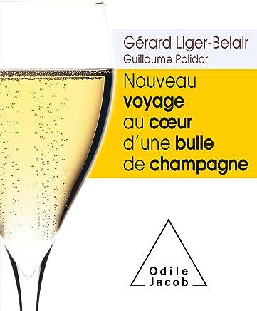 Nouveau voyage au coeur dune bulle de champagne