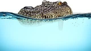 PoolPodz Alligator Head Float & Temperature Tracking Device