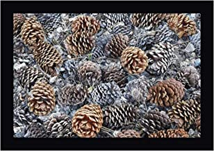 CA, Fallen Jeffrey Pine Cones in Sierra Nevada by Dennis Flaherty 23