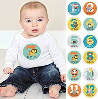 Zoo Animals - Baby Monthly Sticker Set - Baby Shower Gift Ideas - 12 Piece