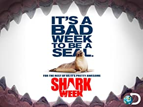 Shark Week Season 2013