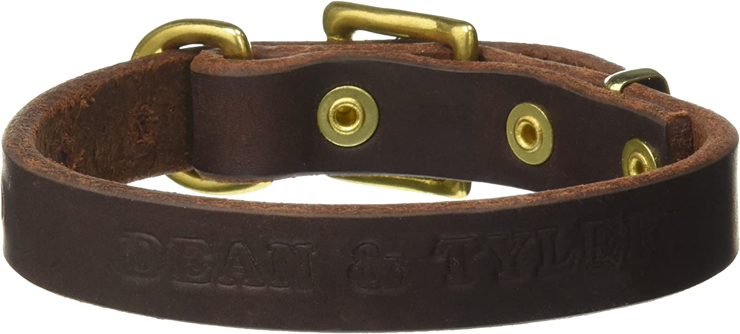 Dean and Tyler  B and B , Basic Leather Dog Collar With Solid Brass Hardware  Brown  Size 10Inch by 3 4Inch  Fits Neck 8Inch to 12Inch