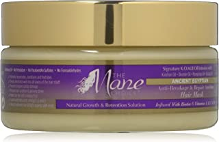 THE MANE CHOICE Ancient Egyptian Anti-Breakage & Repair Antidote Hair Mask - Protect, Repair and Restore Damaged Hair While Promoting Growth and Retention (8 Ounces / 236 Milliliters)