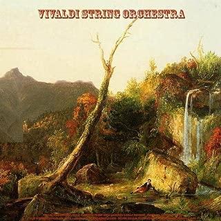 Best albinoni adagio cello solo Reviews