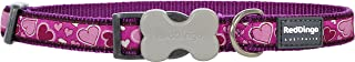 Red Dingo Breezy Love Purple Dog Collar, Medium/Large/20mm