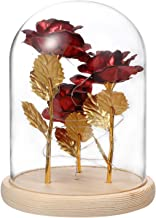 FRCOLOR Eternal Flower Decor Glass Dome with Light Photo Props Forever Rose Gift Box Preserved Romantic Bouquet Gift Box f...