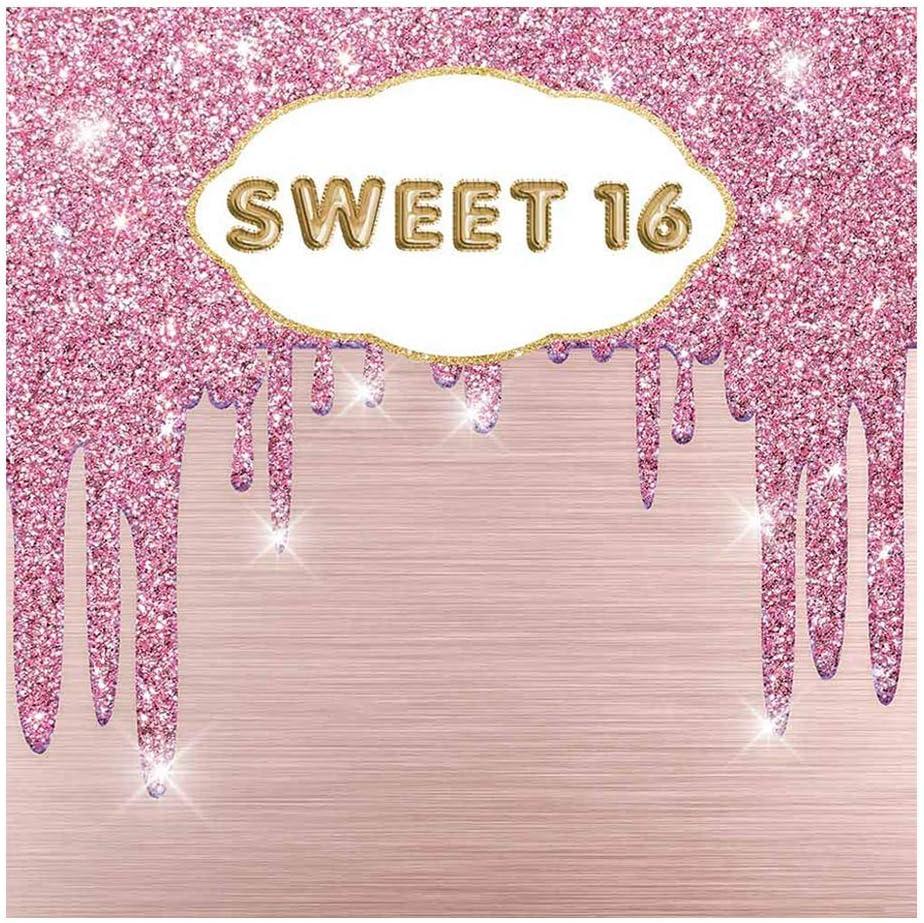 Allenjoy 4 years warranty Sweet 16 Birthday Backdrop Happy Max 52% OFF Girls Sixtee Pink Rose