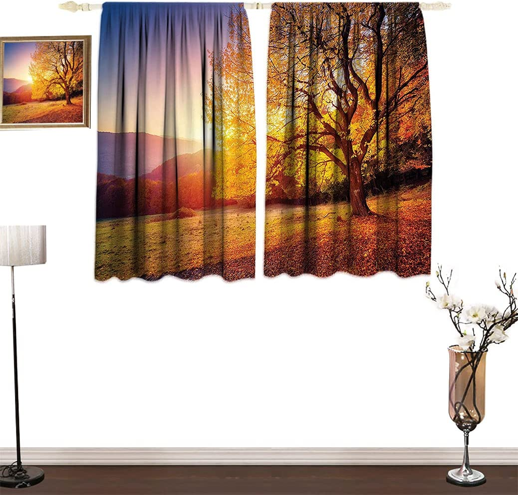 Amazing Scenery Decor Room Darking Curtain with Limited time trial price Su on Portland Mall Tree Hill