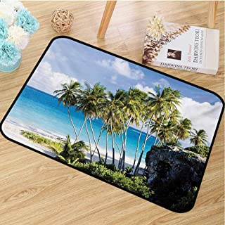 hengshu Travel Commercial Grade Entrance mat Caribbean Island Overlook with Palm Tree and Ocean Exotic Travel Destination Print for entrances garages patios W47.2 x L60 Inch Cream Blue