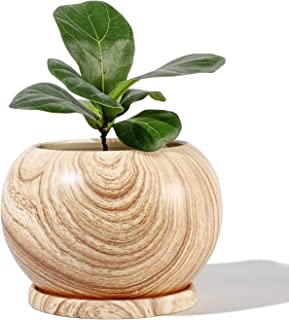 """POTEY Planter Ceramic Plant Flower Pot - 5"""" Large Indoor Glazed Container Bonsai with Drainage Hole Saucer - Large Space, Wooden Pattern"""