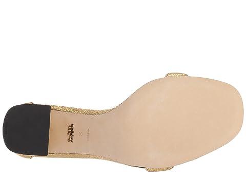 De La Leatherblush Maya Rocklion Negro Con Patentgold 85 Metálica De Mm Firma Sándalo Terciopelo Hebilla Haircalfwine Entrenador Leathernatural De w6xqfPYBB