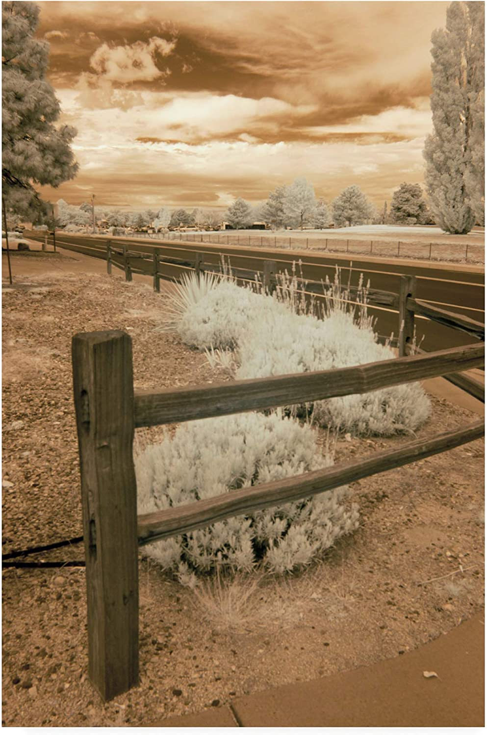 Trademark Fine Art Fence and Road Albuquerque New Mexico by Monte Nagler, 12x19