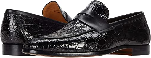 Black Crocodile 2