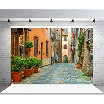 GESEN 10X7ft Romantic Italian Architecture Backdrop St Peters Basilica Photography Background for Wedding Photo Video Studio Props TMGE072