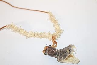 Best rattlesnake vertebrae necklace Reviews