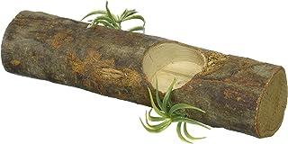 フジコン ジャングル ウッド