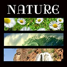 Soundscapes Relaxation Music - Nature, Nature Sounds Relaxation Meditation - Music for Relaxation Meditation, Deep Sleep, Studying, Healing Massage, Spa, Sound Therapy, Chakra Balancing, Baby Sleep and Yoga