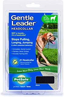 Gentle Leader Comfortable and Painless Collar, Adjustable Shoulder Strap to Enjoy The Walk.