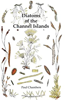 Diatoms of the Channel Islands