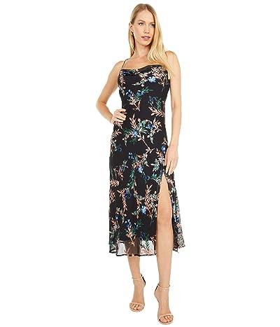 ASTR the Label Gaia Dress (Black Multi Floral) Women